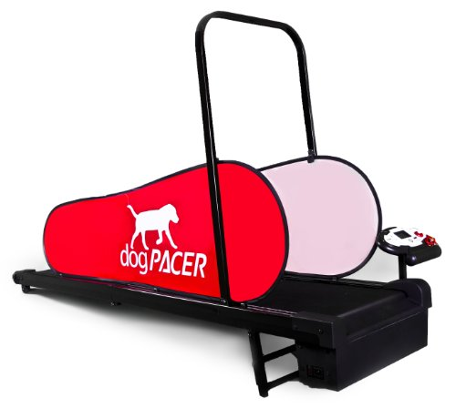 dogPACER LF 3.1 Full Size Dog Pacer Treadmill