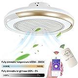 Ventilateurs De Plafond Avec Éclairage Plafonnier À LED, Dimmable Avec...