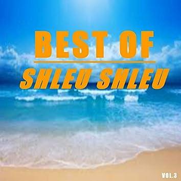 Best of shleu shleu (Vol.3)