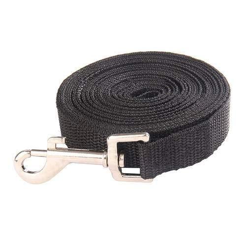 N\C Correa de perro de nylon, collar de perro con hebilla de metal, para mascotas pequeñas, negro/verde/azul/verde/rosa