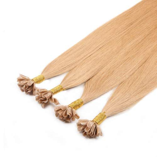 Royal Extension 20 Extensions Kératine Russian Hair Cendre 46 cm