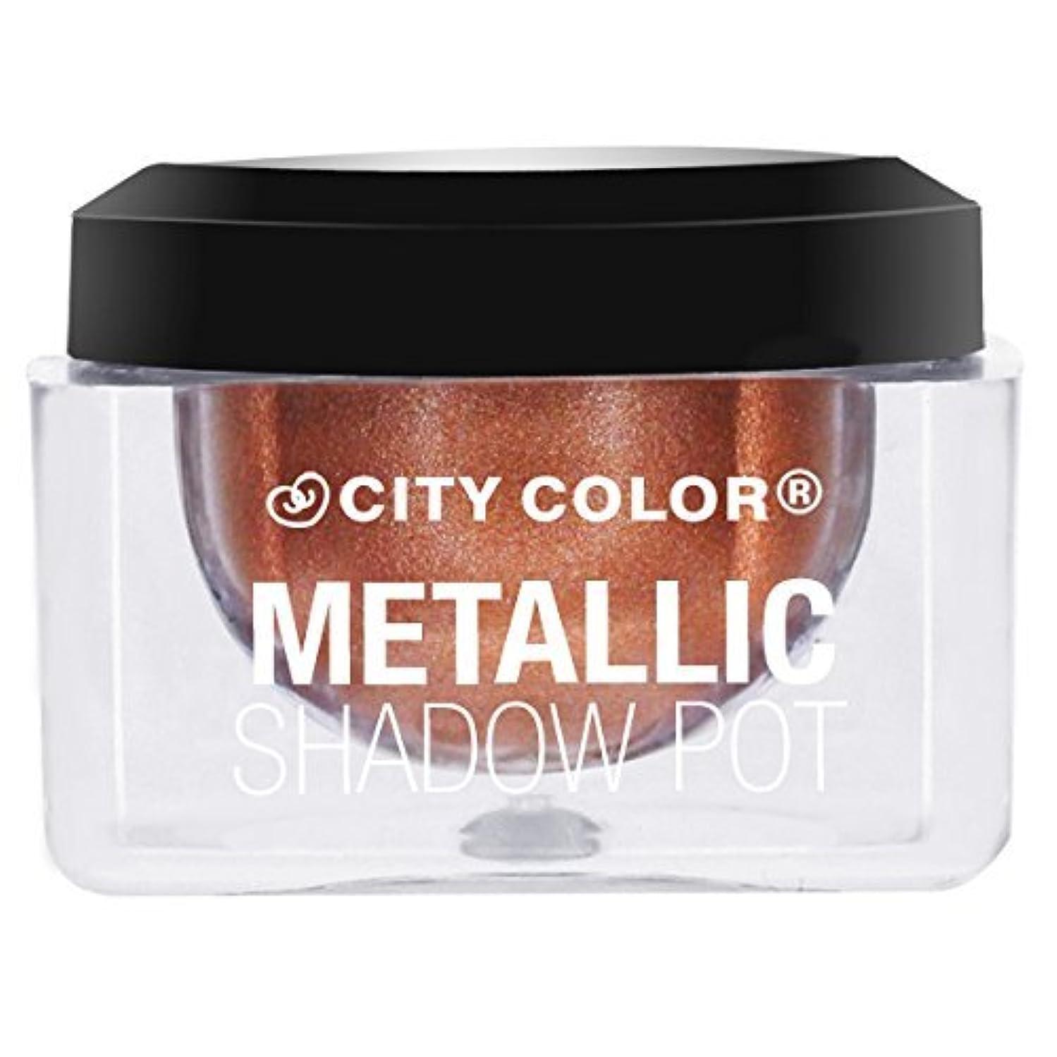 絶対にジャンクション拮抗するCITY COLOR Metallic Shadow Pot - Solar (並行輸入品)