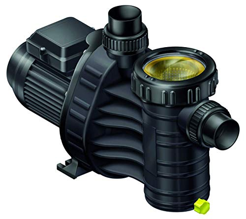 well2wellness® Selbstansaugende Filterpumpe Umwälzpumpe Aqua Plus 4 mit 4m³/h