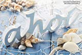 Brynnberg Muschel – Dekomuscheln – Maritime Dekoration (Muscheln 400g) - 5