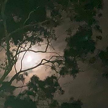 Alabaster Moon