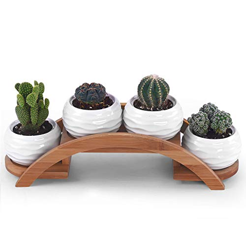 Ceramic White Mini Textured Succulent Plant Pot Cactus Plant Pot with Bamboo Arched Tray, Plants Not Included