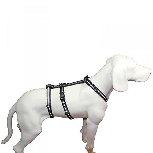 Hoffmann No Exit ausbruchsicheres Hundegeschirr für Angsthund, Sicherheitsgeschirr für Pflegehunde, Panikgeschirr, Reflexband schwarz, Bauchumfang 60-80 cm, 25 mm Bandbreite