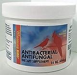 Best Antifungal Supplements - Morning Bird Antifungal/Antibacterial Dietary Supplement for Birds Review