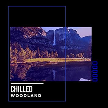 # Chilled Woodland