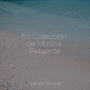 60 Colección de Música Relajante