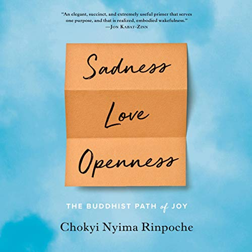Sadness, Love, Openness audiobook cover art