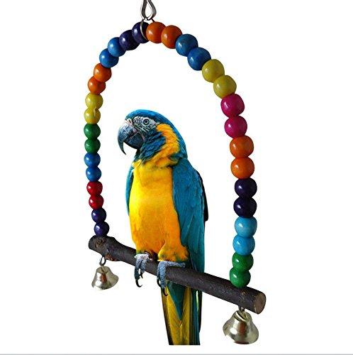 Colorful balançoires Jouets Parrot pour oiseaux perruche et calopsitte Finch inséparable perruche