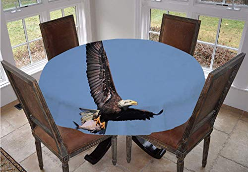 Eagle Round Tablecloth,Hunter Bird Carrying a Fish to the Nest in Open Blue Sky Predator Cycle of Life Decorative Polyester Indoor Outdoor Tablecloth,70 Inch,for Spring/Summer/Party/Picnic Dark Brown