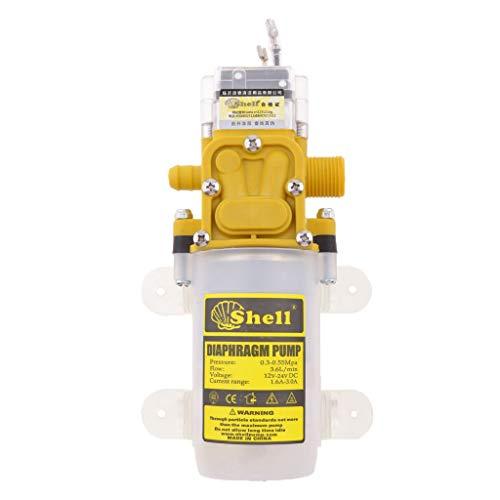 LIZANAN Bomba de Agua de diafragma, Bomba de autoceba automática 4.2L / min for el jardín del hogar Herramientas