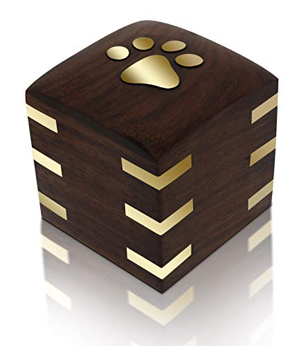 in budget affordable A wooden jar made of rosewood royal matter for dogs and cats with brass legs and brass horns (small box …