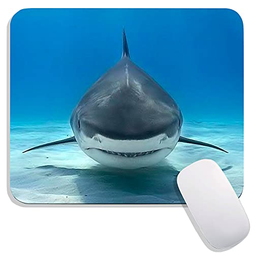 Hokafenle Square Mouse Pad Shark Animal, Premium-Textured Custom Mouse Mat Design,Washable Mousepads Lycra Cloth,Non-Slip Rubber Base Computer Mousepad Personalized for Wireless Mouse