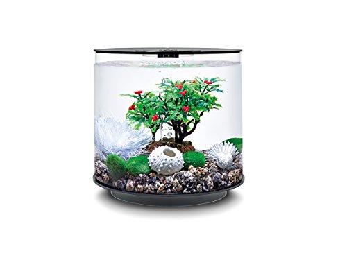 OASE biOrb Decor Set 15L Winter - mehrteilige Aquariums-Dekoration, Komplett-Set mit Unterwasser-Accessoires, Zubehör fürs Aquarium-Becken, in Grün und Weiß