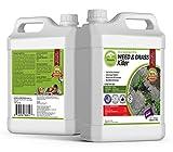 ECO Garden PRO - Organic Vinegar Weed Killer | Kid Safe Pet Safe | Clover Killer...