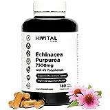 Equinácea 7500 mg. 180 cápsulas veganas para 6 meses. Extracto de Echinacea Purpurea con 4% polifenoles para mejorar las defensas y el sistema inmunitario, y ayudar a las vías respiratorias altas