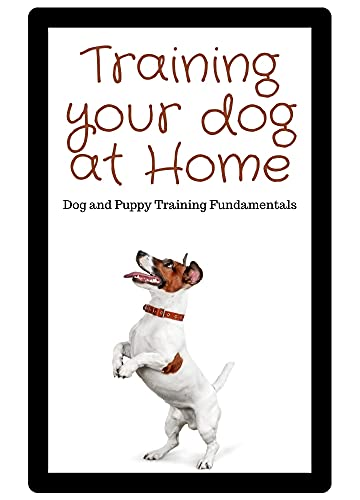 Training Your Dog at Home: Dog and Puppy Training Fundamentals