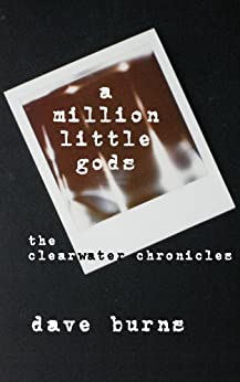 a million little gods: the clearwater chronicles by [Dave Burns]