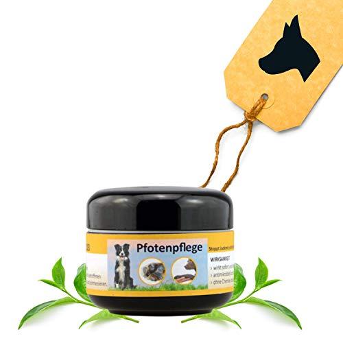 Peticare Spezial Pfoten-Balsam für Hunde - Pfoten-Pflege bei Entzündungen, Verletzungen, rissigen, Ballen beim Hund, Pfoten-Schutz bei Sommer-Hitze und vor Streu-Salz im Winter - petDog Care 2103