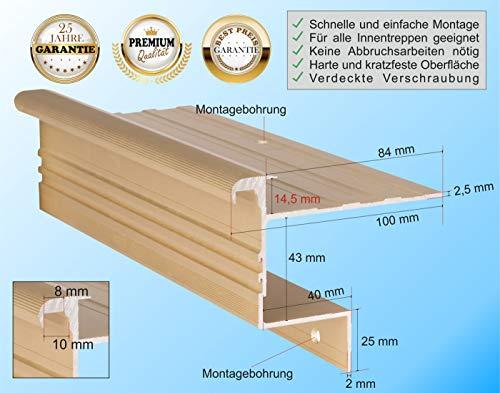 RenoProfil 100 cm Treppenprofil STABIL 14,5 für Parkett und Holz - Treppenkantenprofil für Treppenverkleidung und Treppenrenovierung - Farbe: Messing-Sand