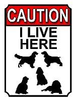 私がここに住んでいる注意ティンサインの装飾ヴィンテージの壁メタルプラークレトロな鉄の絵カフェバー映画ギフト結婚式誕生日警告