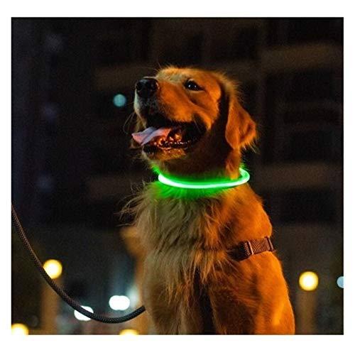 youwu L ^E^D Collar para perro – U^S^B recargable – disponible en 6 colores y 6 tamaños – hace que tu perro sea visible, seguro y visto (color: amarillo, longitud: 0,5 m)