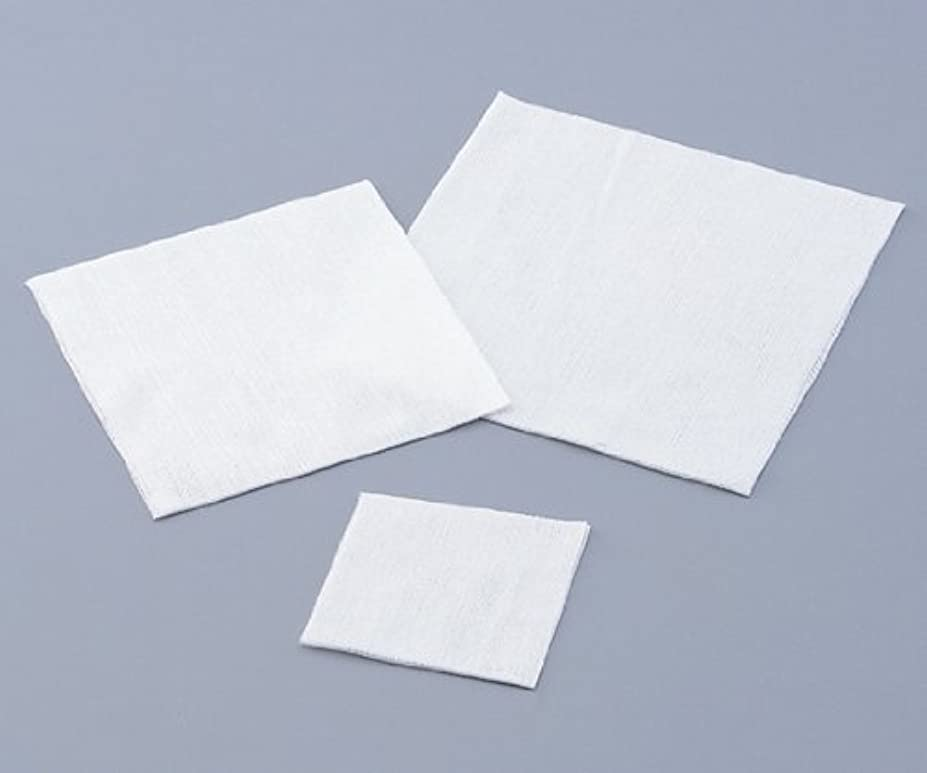 虎真珠のようなシリングアズワン 不織布ワイパー 150×150mm 1包(200枚入) /1-9975-11
