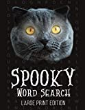Spooky Word Search