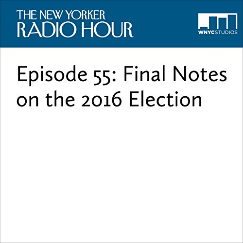 Episode 55: Final Notes on the 2016 Election audiobook cover art