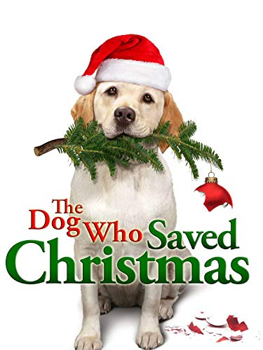 Un bianco Natale per Zeus (The Dog Who Saved Christmas Vacation)
