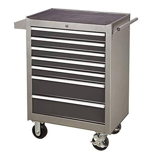 Verktygsskåp verktyg vagn med låda verktyg vagn hårdvara verktyg låda verktyg vagn auto reparation underhåll verktyg vagn med dörr verktyg vagn arbete utrustning vagn ( Färg: Grå, storlek: 62 x 34 x 66 cm )