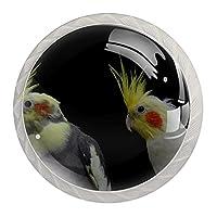 引き出しノブプルハンドル4個 クリスタルガラスのキャビネットの引き出しは食器棚のノブを引っ張る,オカメインコ