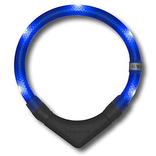 LEUCHTIE® Leuchthalsband Plus blau Größe 45 I LED Halsband für Hunde I 100 h Leuchtdauer I wasserdicht I enorm hell
