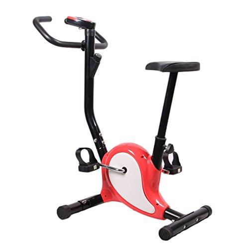 Cyclette da Interni Regolabile, Cyclette per Esercizio con Display LCD (Rosa Rossa)