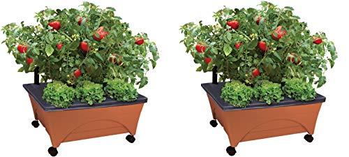 Emsco Group City Picker Raised Bed Grow Box – Self Watering and Improved Aeration – Mobile Unit with Casters (Pack of 2)