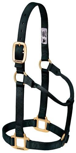 Weaver Leather Original Non-Adjustable Nylon Horse Halter, Average, Black