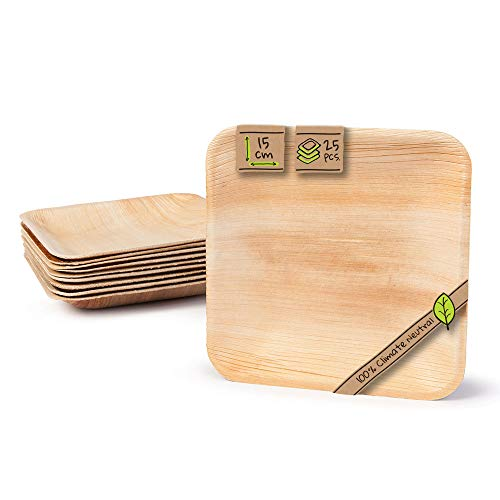 BIOZOYG Platos de Hojas de Palma | 25 Piezas de ojas de Palma Rectangular 15 x 15 cm | Bio vajilla desechable Boda compostable Biodegradable Vajilla de Fiesta