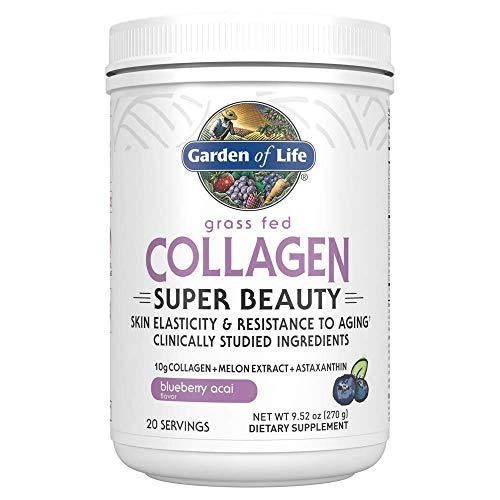 Garden of Life Grass Fed Collagen Super Beauty Powder - Blueberry Acai, 20 Servings, Collagen Powder for Women Skin Hair Nails Joints, Collagen Peptides Powder, Collagen Protein, Collagen Supplements