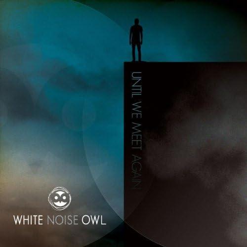 White Noise Owl