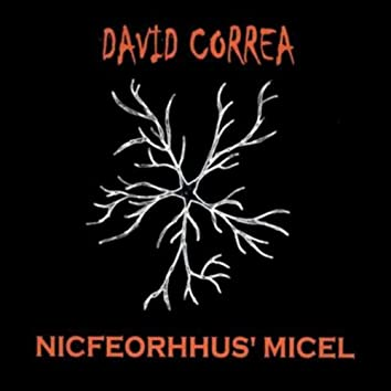 Nicfeorhhus' Micel