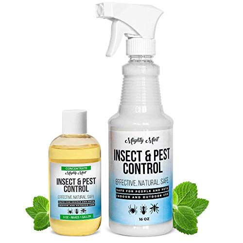 Mighty Mint Peppermint Oil Insect & Pest Control Spray with Concentrate - Makes 1 Gallon, Non Toxic