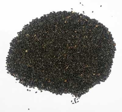 Tulsi Kapoor Holy Basil (Ocimum sanctum), packet of 100 seeds, organic