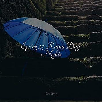 Spring 25 Rainy Day Nights