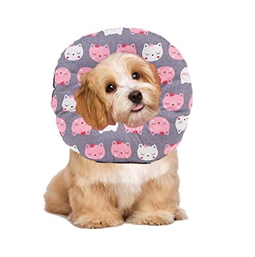 Ducomi Molly - 1 collar para recuperación de perros y gatos, ajustable, protector suave para mascotas, para curación de las heridas después de cirugía (L, Meow)
