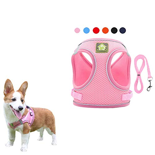 FEimaX Dog Harness and Leash Set, No-Pull Breathable Soft Mesh Puppy Vest Harness Reflective Adjustable Pet Harnesses for Small Medium Dogs and Cats - Outdoor Easy Control