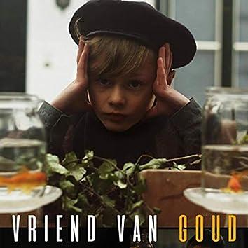 Vriend Van Goud (Original Film Score)