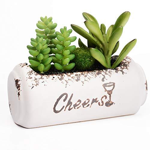 Gintan Piante Artificiali Succulente, Piante Grasse Finte con Vaso in Ceramica, Piante Artificiali Decorative, Piante Finte da Interno e Esterno Decorazioni per Casa, Ufficio, Scrivania, Giardino